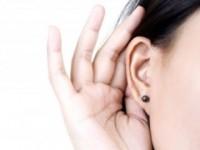 cirugia de orejas